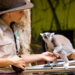 http://indulgemagazine.net/ - Indulge Magazine - Queensland Travel Experiences/