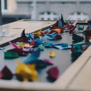 Flowstate-Workshops-Boat-IND