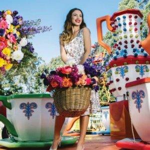 Brisbane Arcade Flower Show - Indulge Magazine - www.indulgemagazine.net
