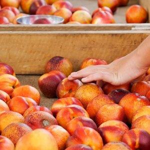 milton markets fresh produce